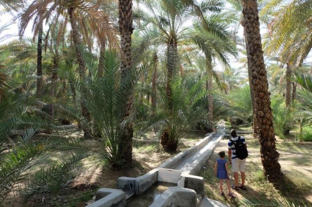 Al Ain Oase